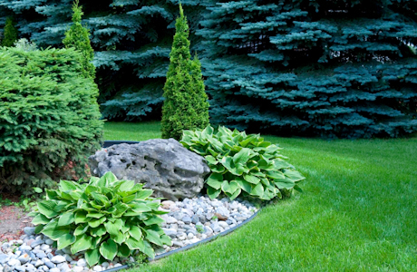 Los Angeles, CA. Landscape Contractors Insurance